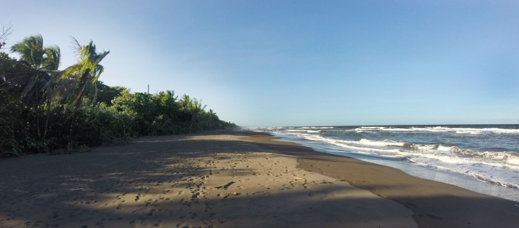 tortuguero_beach2